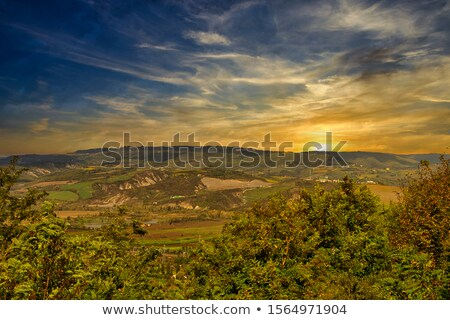 Toscane collines automne arbre nature vert Photo stock © LianeM