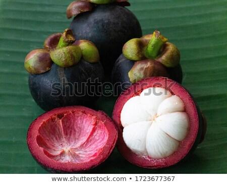 Мангостин фрукты изолированный белый Сток-фото © tangducminh