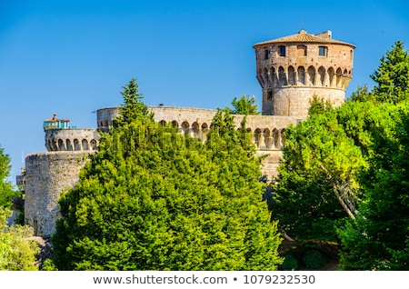 Medici Castle in the Park in Volterra, Tuscany, Italy Stock photo © anshar
