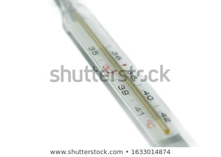 Medical thermometer Stock photo © gavran333
