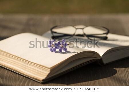 książki · kwiat · odizolowany · biały · liści · edukacji - zdjęcia stock © alinamd