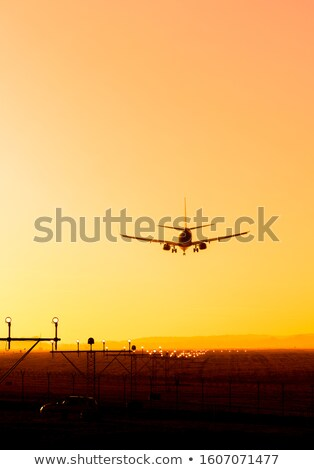 landing plane and sunset stock photo © c-foto