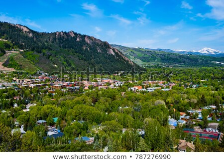 Colorado Aspen Vista Stock photo © emattil
