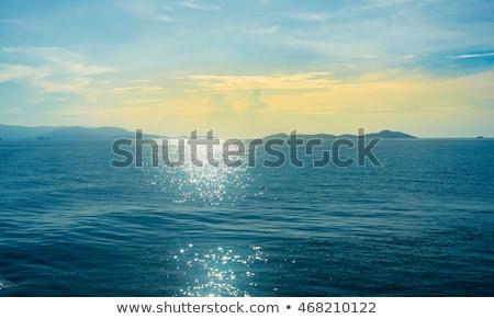 Crystals of sea salt Stock photo © fogen