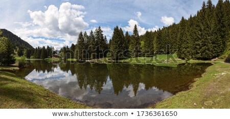 Trentino - Caprioli lake Stock photo © Antonio-S