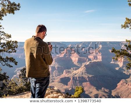 sul · Grand · Canyon · Arizona · EUA · panorama - foto stock © meinzahn