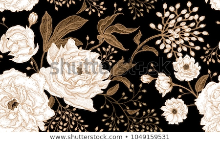 Stock foto: Vektor · floral · Design · Elemente · Muster · line