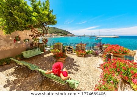 The village of Marciana Marina. Elba island Stock photo © master1305