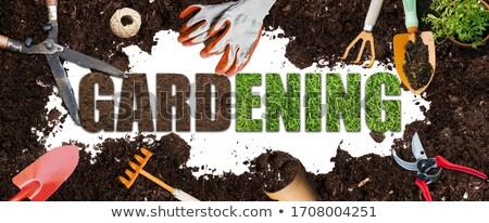 garden word made of vegetables stock photo © fuzzbones0