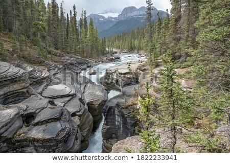 Fluss Wasser Berge Park Kanada fließend Stock foto © ndjohnston