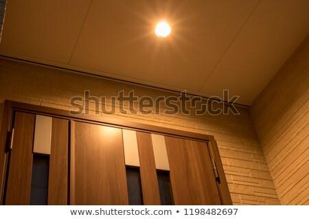 ház · homlokzat · infravörös · kép · épület · technológia - stock fotó © suljo