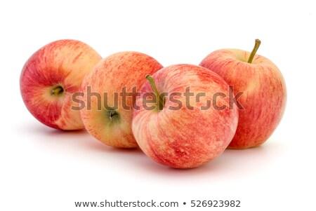 Almák négy napos konyhaasztal kész víz Stock fotó © hansgeel