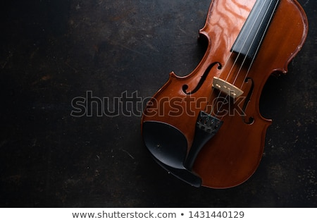 Violin with Bow on Dark Background stock photo © iconify