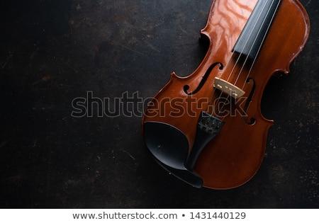 バイオリン 弓 暗い スポット 実例 ストックフォト © iconify