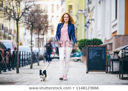 kutya · póráz · száj · aranyos · retkes · terrier - stock fotó © cynoclub