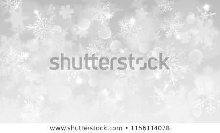 Foto stock: Quadro · pequeno · flocos · de · neve · horizontal · diferente · topo