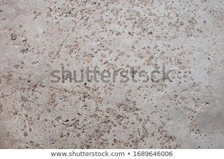 Textuur grijs beton trottoir pleinen naadloos Stockfoto © tashatuvango