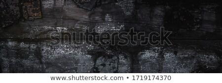 Feketefehér textúra fából készült deszkák otthon háttér Stock fotó © IMaster
