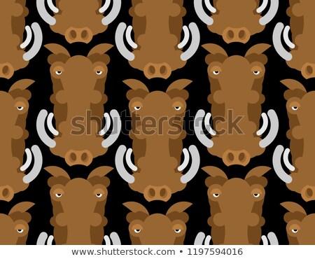 Warthog wild boar seamless pattern. African pig ornament. Wild a Stock photo © popaukropa