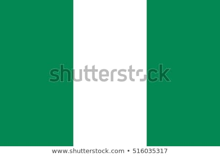 Nigeria vlag witte business textuur groene Stockfoto © butenkow