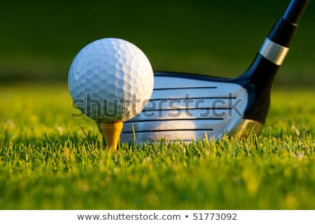 Golf ball on tee in front of driver Stock photo © Kzenon