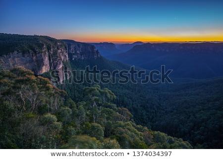 íny · fák · napfelkelte · forró · égbolt · naplemente - stock fotó © lovleah