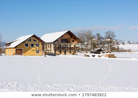 farm house and outbuildings in the snowy landscape stock photo © lovleah