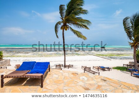 Stock photo: Tropical flower on a deckchair. Holiday concept
