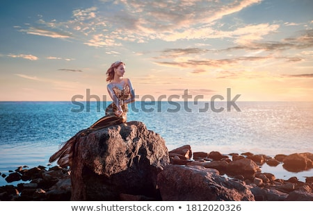 Lovely mermaid on the stone stock photo © liolle
