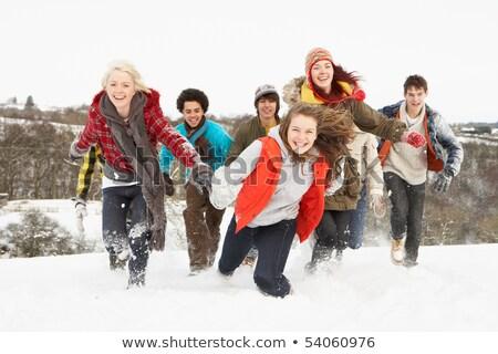 мальчики · весело · зима · пейзаж · снега · детей - Сток-фото © monkey_business