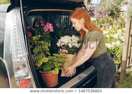 Young flower shop owner packing flowers in car trunk Stock photo © pressmaster