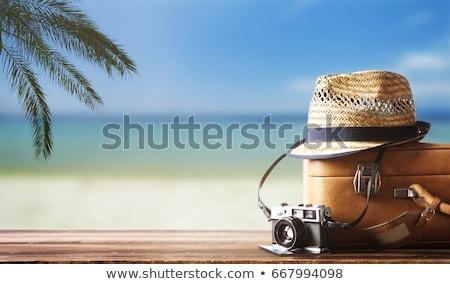 Camera paspoort zonnebril hoed strandzand vakantie Stockfoto © dolgachov