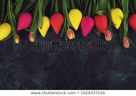 Kézzel készített igazi tulipánok beton anyák nap Stock fotó © olira