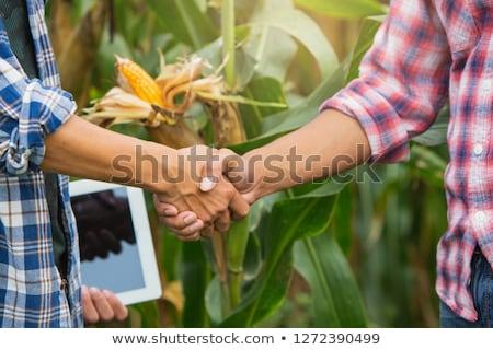 таблетка · рукопожатие · компьютер · изолированный · бизнеса - Сток-фото © adamr
