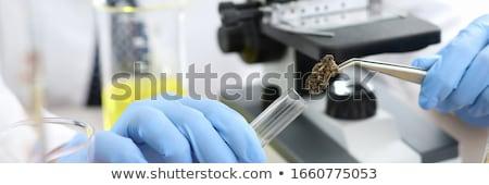 Chemist with tweezers and flask Stock photo © Paha_L