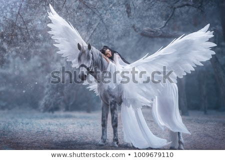 Girl on white horse, white background Stock photo © ndjohnston