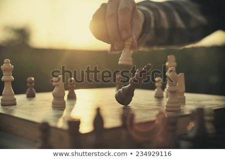 casal · de · idosos · jogar · xadrez · casa · sorrindo · vitória - foto stock © photography33