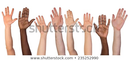 Group of Hands in the air isolated on white background stock photo © oly5