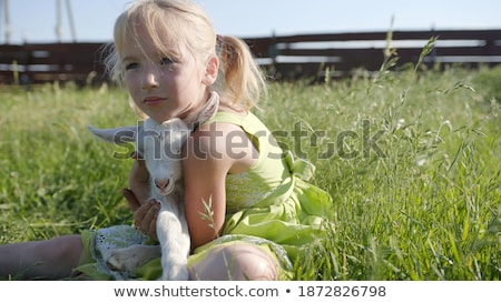 cute brunette holding a little goat stock photo © konradbak