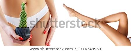 Selymes női lábak fehér meztelen lány Stock fotó © Nobilior