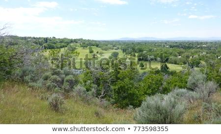 golf · sahası · yeşil · delik · bayrak · iki · golf - stok fotoğraf © chris2766