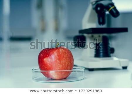 красное · яблоко · белый - Сток-фото © devon