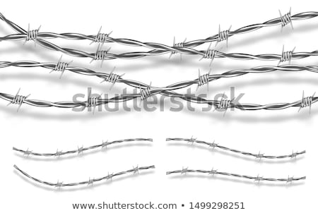 Barbed Wire on Post Stock photo © TheFull360