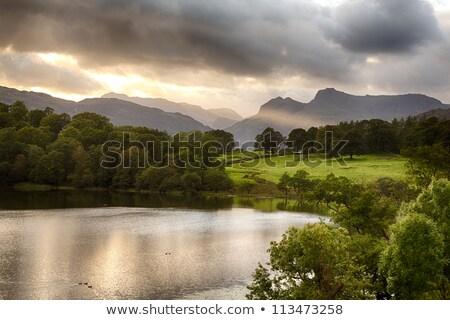 pacífico · lago · ver · inglaterra · país · parque - foto stock © backyardproductions