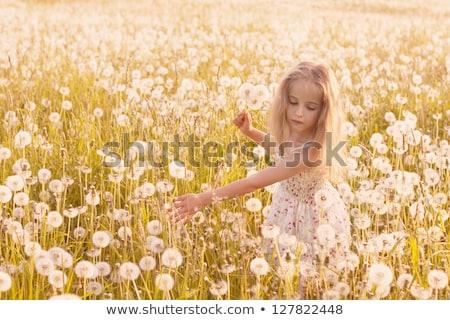 spring landscape   beauty blonde girl in flowering meadow stock photo © gromovataya