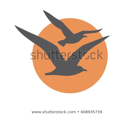 Vektor ikon sirály tenger madár madarak Stock fotó © zzve