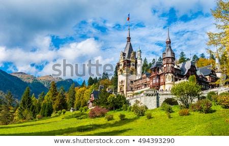 Сток-фото: замок · Румыния · каменные · группа · фонтан · саду