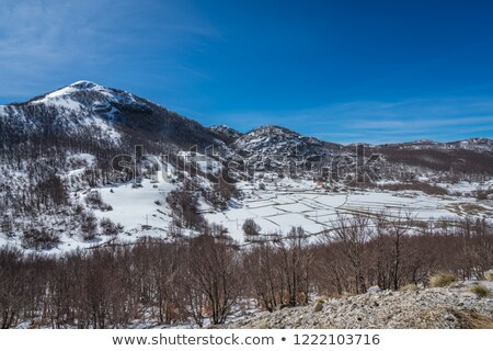 montanha · lago · laranja · pôr · do · sol · paisagem - foto stock © zzve