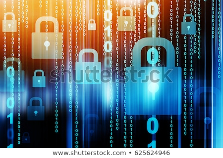 Data Protection Concept. stock photo © tashatuvango