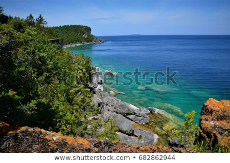 Trees along a bay, Georgian Bay, Tobermory, Ontario, Canada Stock photo © bmonteny